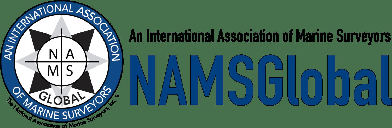 NAMSGlobal+logo+transparent